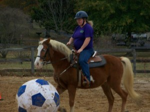 Cody our large pony